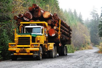 A logging truck on backroads in the woods