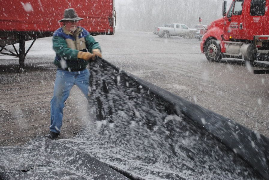 flatbedder rolling up tarp in the snow